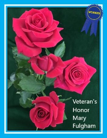 class 3 veteran's honor mary fulgham.jpg