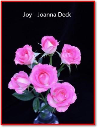 class 14 joy joanna deck.jpg