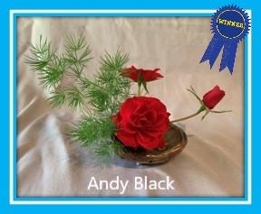 class 22 andy black 1.jpg