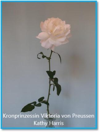 class 10 Kronprinzessin Viktoria von Pre