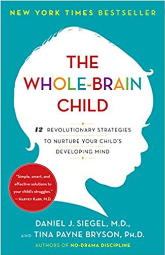 The Whole Brain Child image.jpg