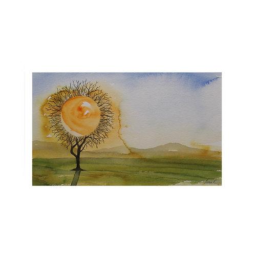 Morning sun fantasy II