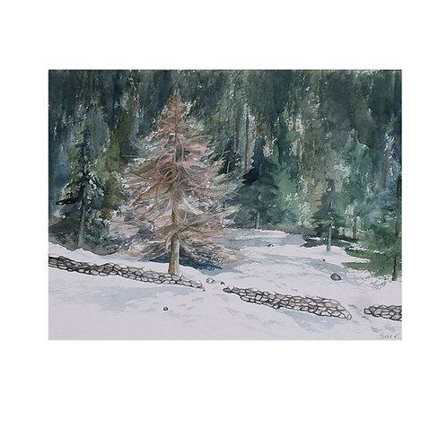 Winter in Kematen Alm ll Tirol Austria