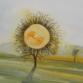 Mysteries morning sun in upper Austria