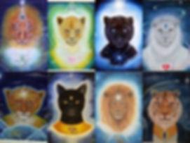Feline-beings.jpg