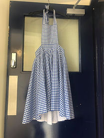 Blue Gingham Dungaree Skirt.jpg
