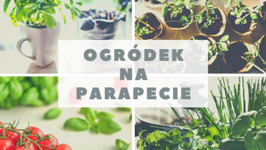Eko ogródek na parapecie