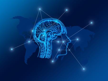 The Man Brain Versus the Woman Brain