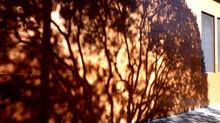 """Une vision systémique de """"La bûche"""", le film"""