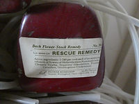 rescue-gaelle-roullet-nantes-redon.JPG