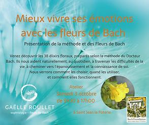Découverte_des_fleurs_.png