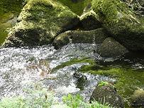 gaelle-roullet-eau-de-roche-2.JPG