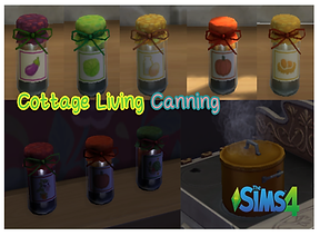 blog-ts4-canning-cover-white-frame.png