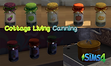 blog-ts4-canning-cover-final.png