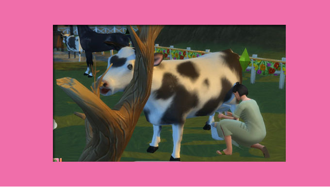 The Sims 4 CC Dairy Cow