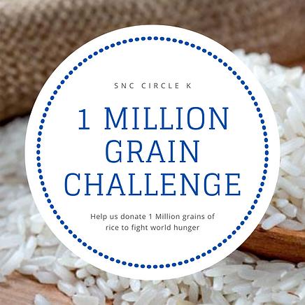 1 Million Grain Challenge.png