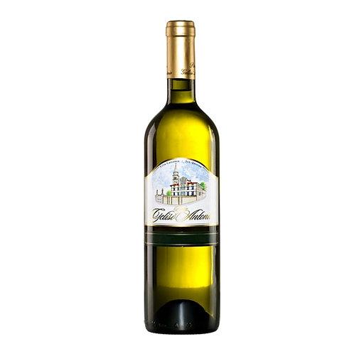 Chardonnay di Antonio
