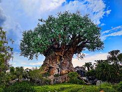 Disney_Animal_Kingdom_(27589660700).jpg