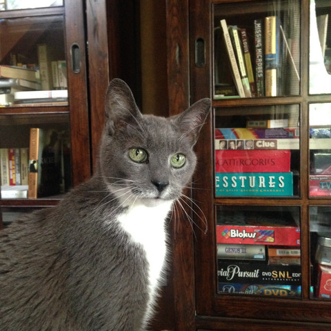 Floyd keeps watch over the Library.