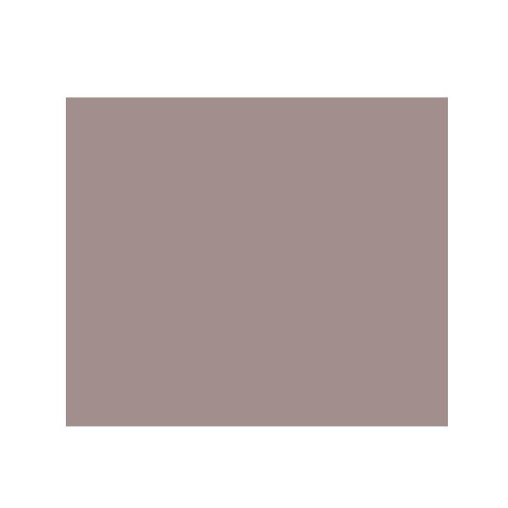 rlolcTwitterIcon