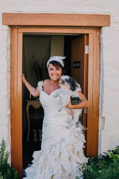 Bride_Dog_Wedding_Dress