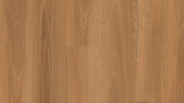 Natural Spotted Gum