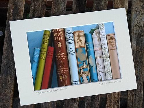 Roo Waterhouse | Prints