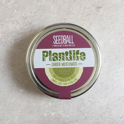 Seedball Tin | Plantlife Mix