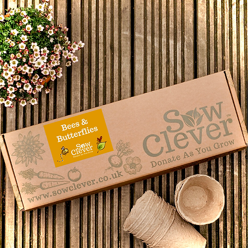 Sow Clever Kit | Bees & Butterflies
