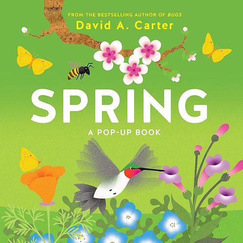 Spring A Pop Up Book | David Carter