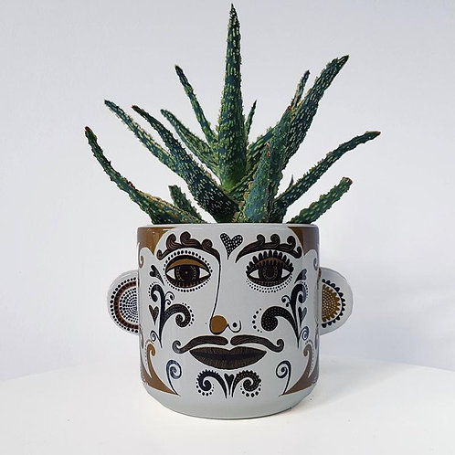 Lush Clown Plant Pot