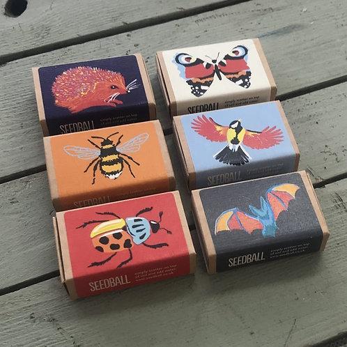 Seedball Boxes