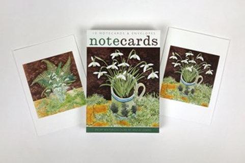 Notecards & Envelopes