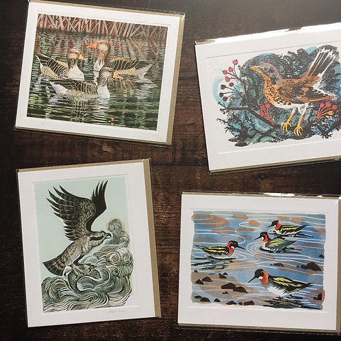 Art Angels Greeting Cards | Birds