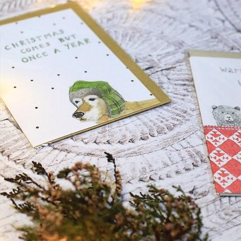 Dear Prudence Christmas Cards