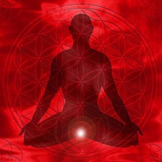 Healing Root Charka