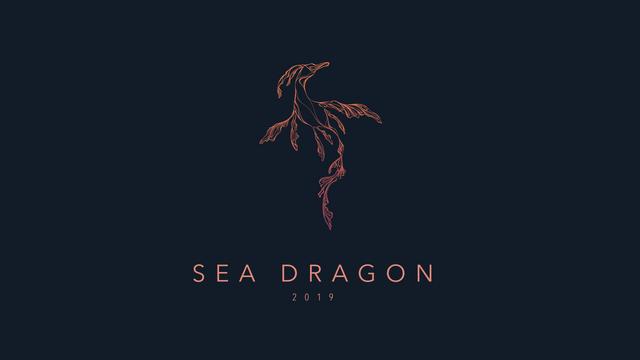 190630 Sea Dragon-01.png