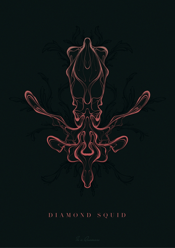 201129 Diamond Squid 01_03.png