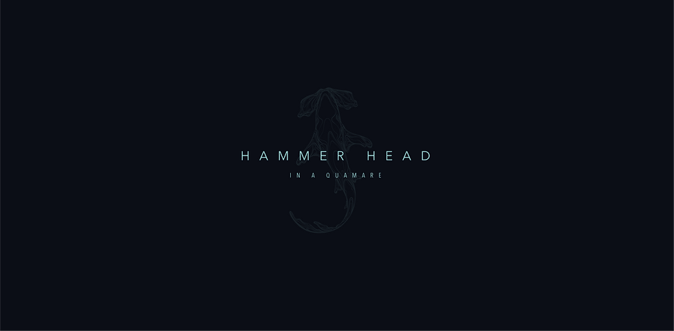 200902 Hammer Head 03_01.png