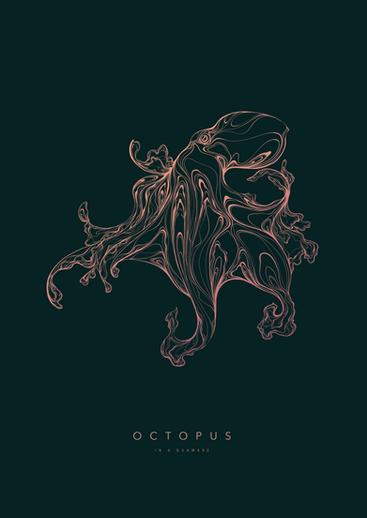 190314 Octopus 01_3.png