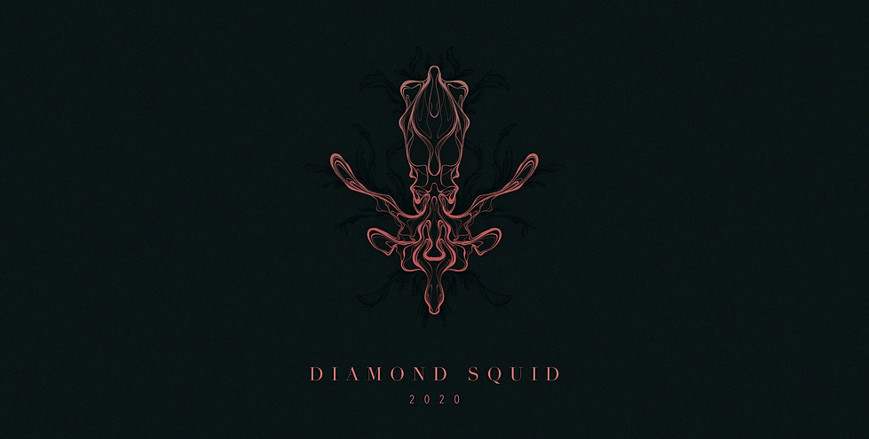 201129 Diamond Squid 01_01.png