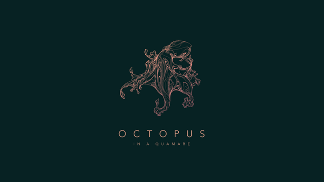 190314 Octopus 01_1.png