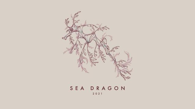 210109 Sea Dragon 2021 Web_01.png