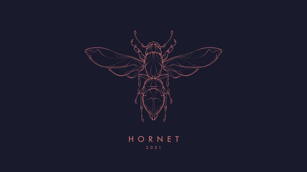 210907 Hornet Web_01.png