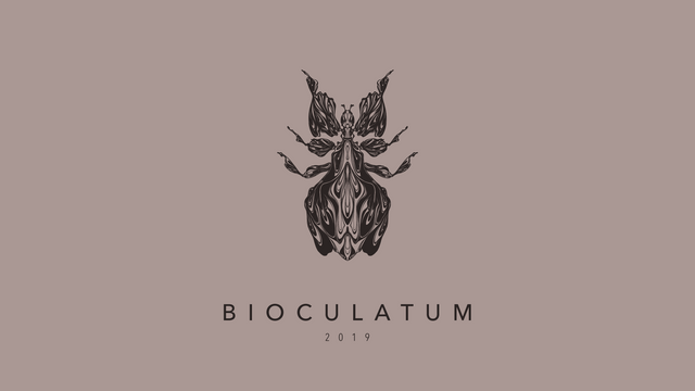 190908 Bioculatum_01.png