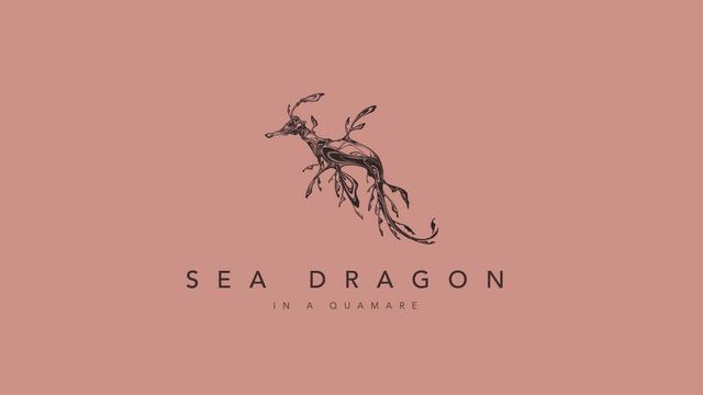 190310 Sea Dragon 02_1.png