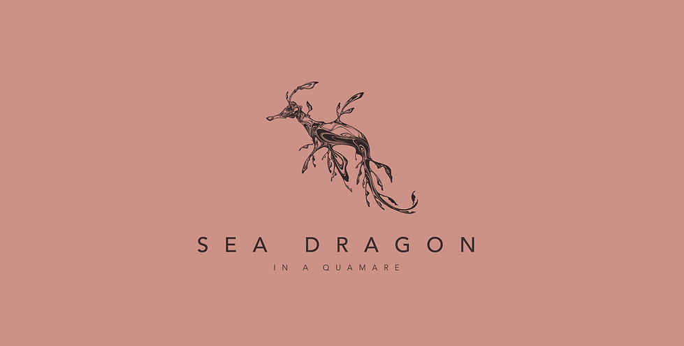 190310 Sea Dragon 02_1.png