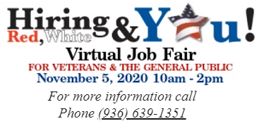 detworkvirtualjobfair.PNG