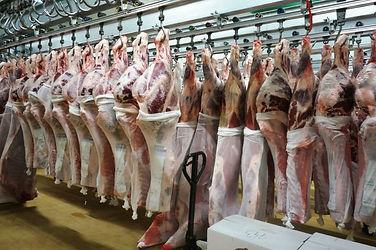 meatway olano.jpg