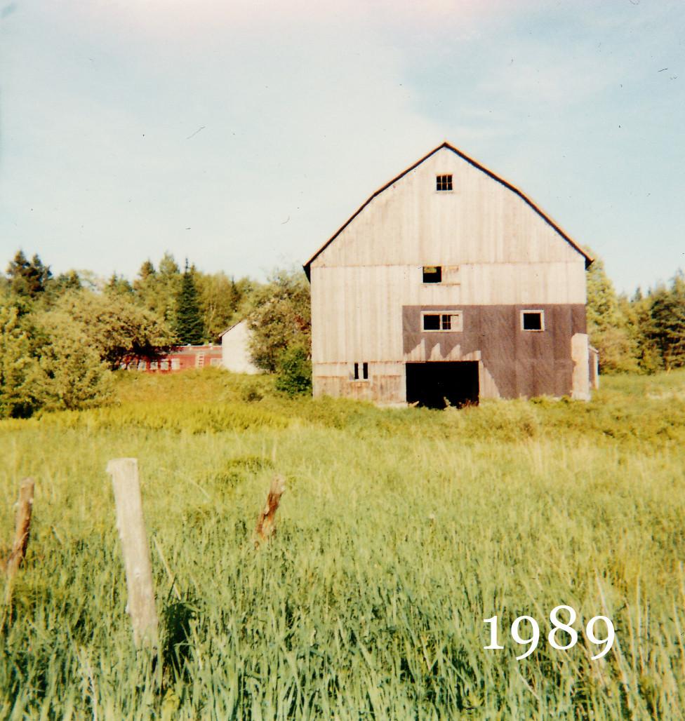 1989oldphoto2.jpg